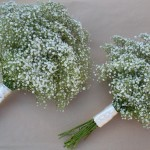 All Gypsophila Hand Tied Bouquets
